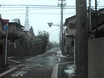 sn310026.JPG